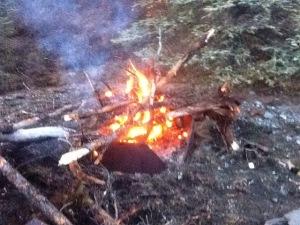 better fire alaska